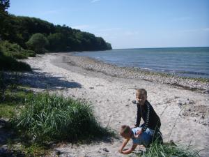 Strandtur sfo - billed